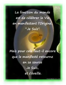 """Célébrer-la-Vie-en-manifestant-l'Origine-""""Je-Suis"""""""