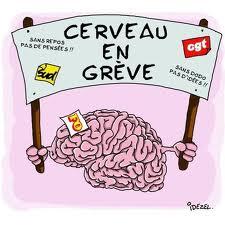 cerveau en grêve